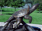 snapping turtle bronze sculpture